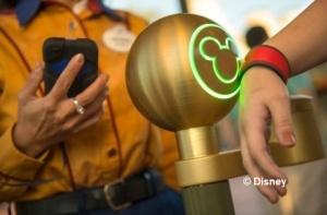 Disney biometric access control