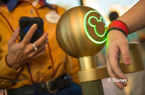 Disney biometric access control